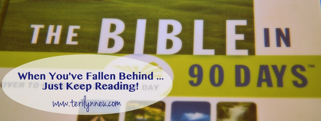 Behind in Bible in 90 Days Reading www.terilynneu.com